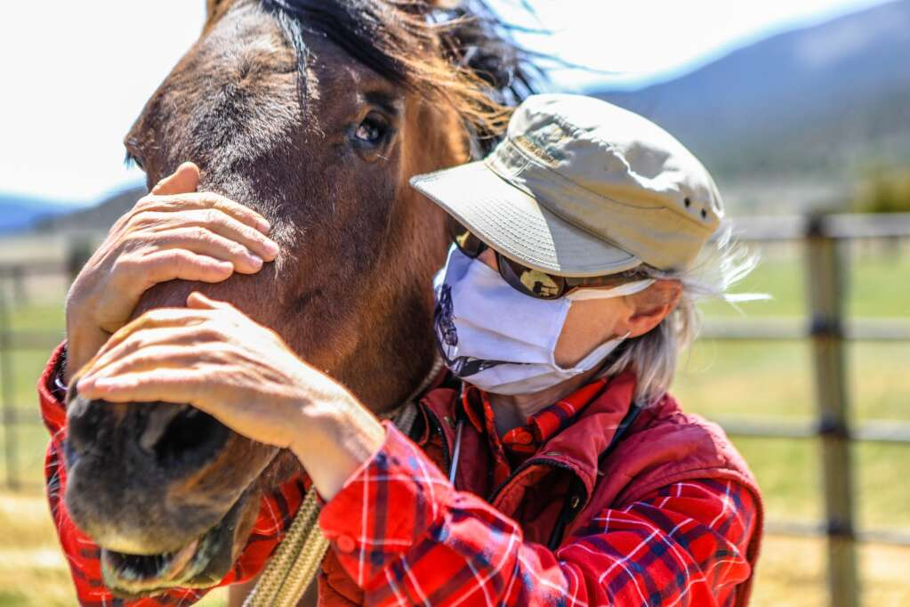 Silvia Stocker, large animal veterinarian, checks in on horses at the Mountain Valley Horse Rescue May 2020 in McCoy.