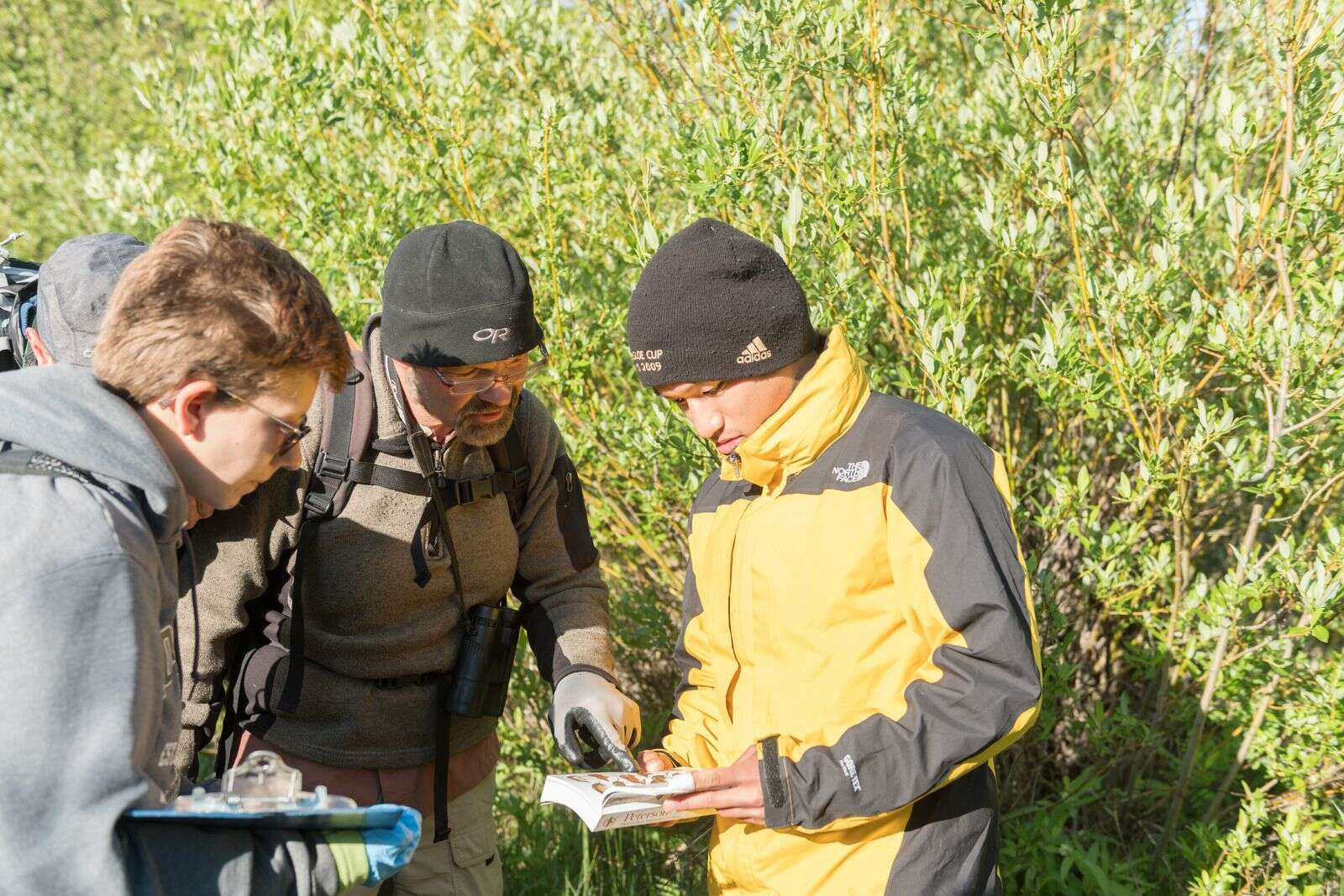 Colorado State University Fish, Wildlife and Conservation Biology students Alex Binkley and Terutaka Funabashi and Colorado Natural Heritage Program invertebrate zoologist and ecologist John Sovell identify the species of a shrew they captured during a BioBlitz led by Colorado State University at the Aspen Center for Environmental Studies Hallam Lake Preserve, June 27, 2019, a 25-acre site nestled in downtown Aspen. | William A. Cotton/CSU Photography