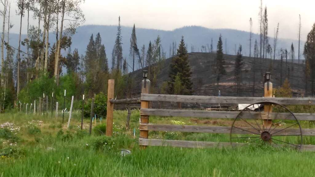 The Muddy Slide Fire didn't completely wipe out the Lynx Pass Ranch, though it burned most of the buildings on the property. Jim Ficke Said he hopes the fire will help open the forest back up for elk that have struggled get through all the forests beetle kill and downed trees. (Courtesy/Barb Ficke)