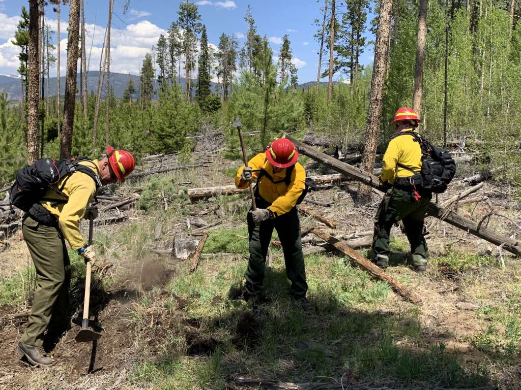 Firefighters clear large vegetation and scratch away at the ground to create a fire line during a wildland firefighting exercise Tuesday, June 8, at County Commons. | Photo by Sawyer D'Argonne / sdargonne@summitdaily.com