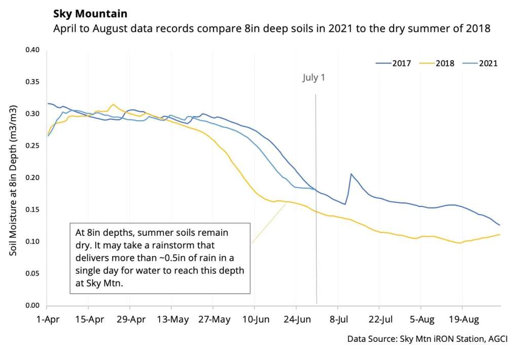 Conditions at Sky Mountain Park aren't quite as dry at the 8-inch depth as in 2018. | Aspen Global Change Institute/courtesy image