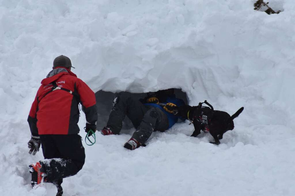 After the exercise, Keena tracks down another person hiding in the snow. | Photo by Sawyer D'Argonne / sdargonne@summitdaily.com