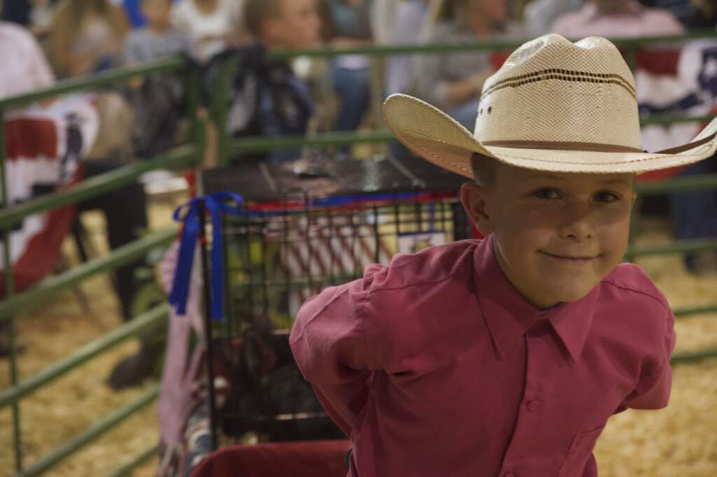 The reserve grand champion in rabbits pulls his animals for auction at the Moffat County Fair livestock auction Saturday evening. | Cuyler Meade / Craig Press