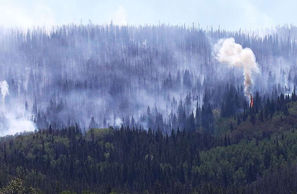 A tree crowns and adds smoke to the air surrounding the Muddy Creek Fire just off of Routt County Road 16 in South Routt County. Crews from across Colorado have been called to help out with the fire. | John F. Russell/Steamboat Pilot & Today