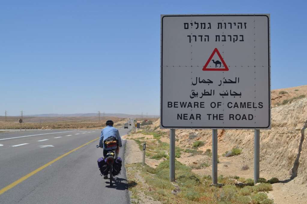 Watching out for camel crossings in the Ngev Desert in southern Israel.