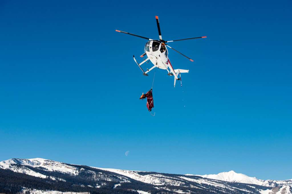 A helicopter brings a pregnant elk into the landing zone for testing on Owl Creek Ranch in Snowmass on Friday, March 5, 2021. Colorado Parks and Wildlife are planning to capture approximately 40 pregnant cows and put vaginal implants and collars on the elk to monitor the herd population and recruitment. (Kelsey Brunner/The Aspen Times)